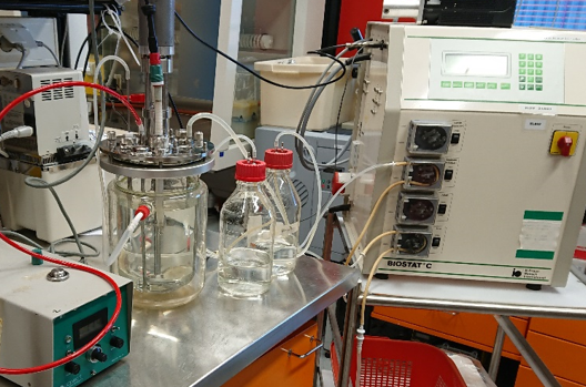 continuous flow reactor for sulphate reduction experiments